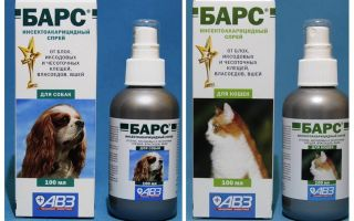 Spray Bars from fleas for cats and dogs
