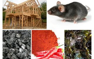 Protection of the frame house against mice