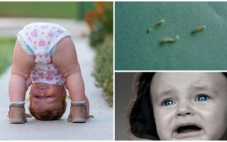 Symptoms and treatment of pinworms in a child