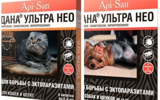 Dana Ultra Neo drops from fleas for cats and dogs