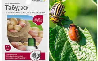 Taboo remedy for the Colorado potato beetle