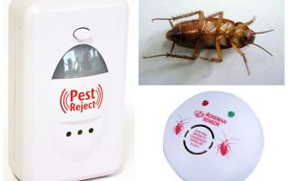 Electronic Cockroach Repellers
