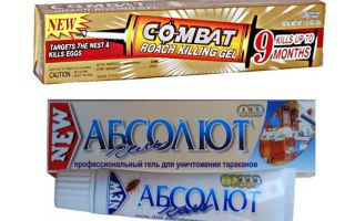 Best Gels for bedbugs: Global, Absolute, Fipronil, etc