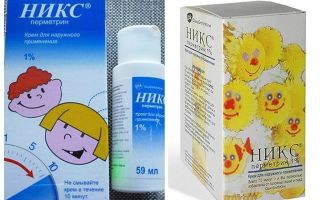 Knicks remedy for lice and nits