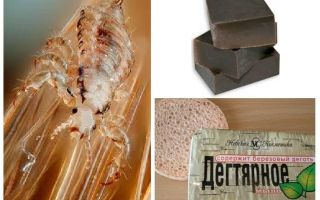 Tar soap from lice and nits