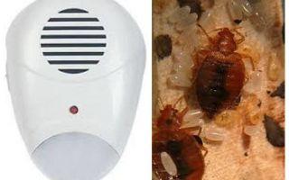 Repeller Pest Repeller from bedbugs