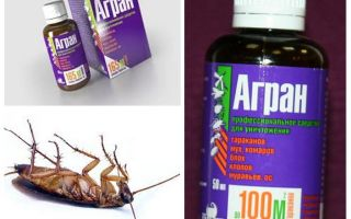 Agran remedy for cockroaches