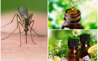 Essential oils from mosquitoes