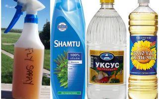 Do-it-yourself mosquito repellent shampoo + vinegar