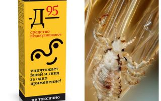 Means D 95 for lice and nits