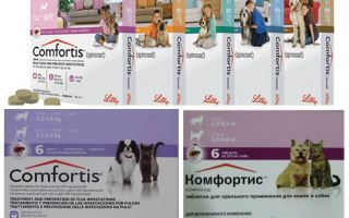 Flea tablets for dogs and cats