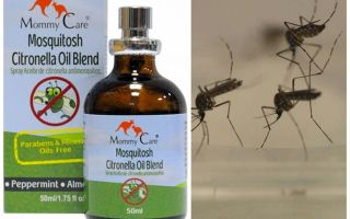 Mommy Care mosquito repellent oil