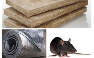 What kind of insulation do not eat rats and mice