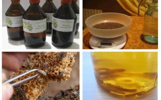 Tincture wax moth indications and contraindications