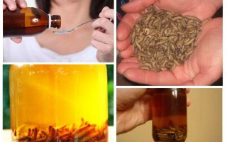 Tincture of bee flames
