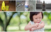 Effective means of mosquitoes for children from 1 year