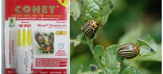 The remedy for the Colorado potato beetle Sonnet