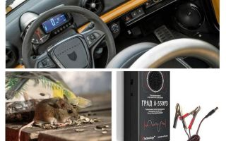 Car repeller rats and mice