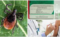 Tick-borne encephalitis vaccine