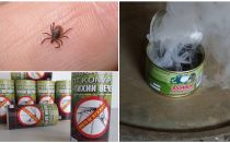 How to protect yourself from ticks, protection from bites