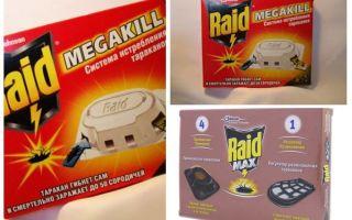 Cockroach Raid: traps, spray, aerosol