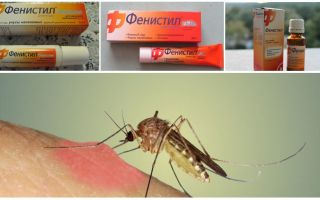 Gel Fenistil from mosquito bites: instructions, reviews and analogues