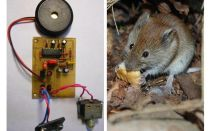 Ultrasonic repeller rats and mice with their own hands