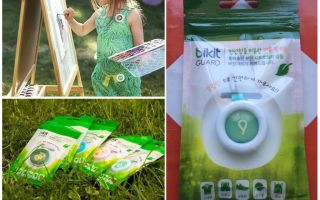 Bikit Guard button against mosquitoes