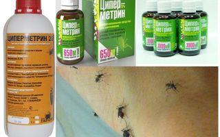 Means Tsipermetrin against mosquitoes