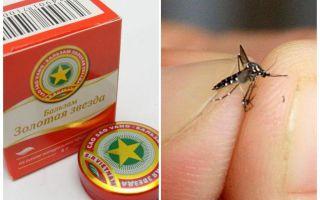Balsam star mosquito