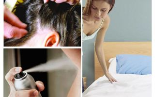 Memo on pediculosis for parents