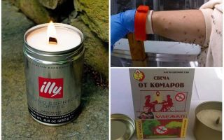 Mosquito candles