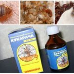 Cucaracha remedy for bedbugs-1