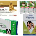 Flea tablets for dogs