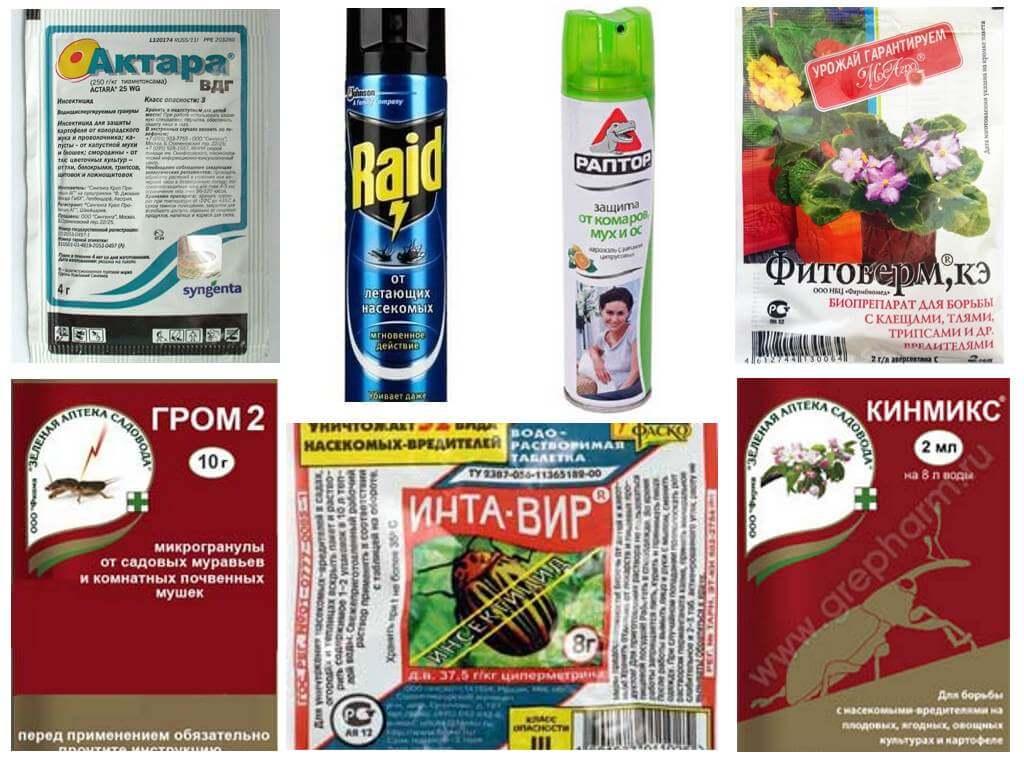 Flowerfly aizsardzības līdzekļi