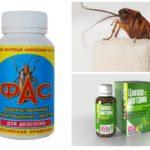 Cockroach Pills