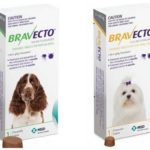 Bravecto tablets