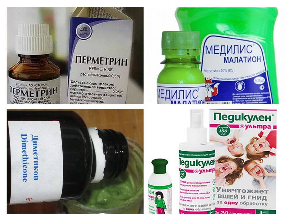 Pedikulozes zāles