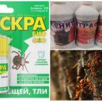 Ant Chemicals