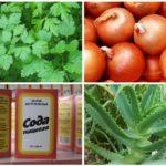 Folk recipes from bee sting