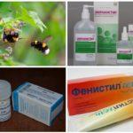 טיפול חרקים