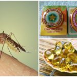 Methods of dealing with mosquitoes