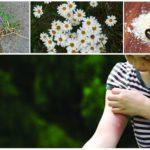 Mosquito repellent for children