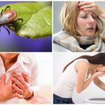 Ērču encefalīta simptomi pieaugušajiem