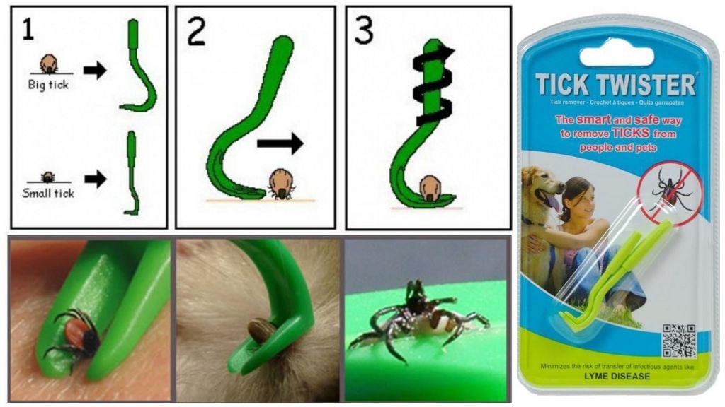 טיק Twister Tick